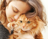 Cuddle your Kitty!