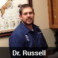 Dr. Russell